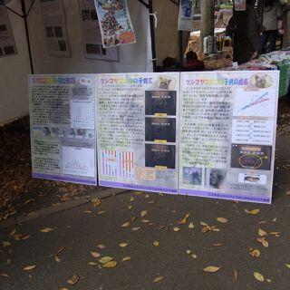 日本獣医生命科学大学の資料