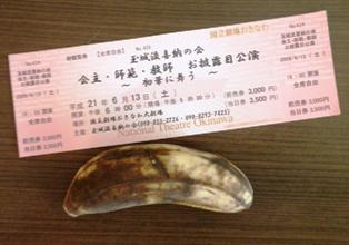 チケットと島バナナ