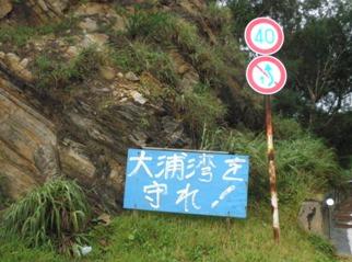 路沿いの「大浦湾を守れ」という立て看板